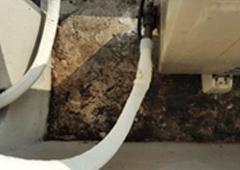 바닥 배설물 집진 및 청소