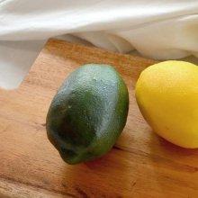 레몬(그린) FM11112922G