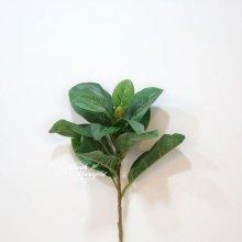 76CM 마그놀리아 잎가지  FMWT065076