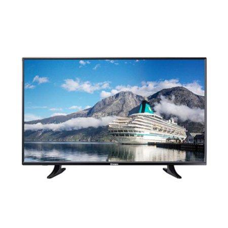 108cm FHD TV 43W1000C