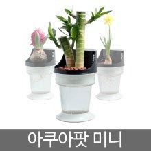 <수중식물 공기정화기> 아쿠아팟 미니