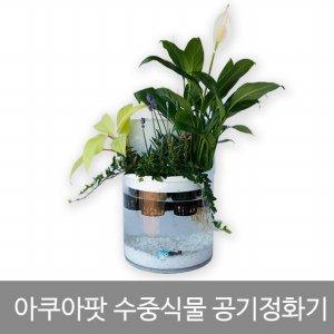 ★수중식물 공기정화기★아쿠아팟