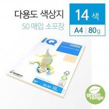 IQ Color A4 색상지 80g 14색 50매(소포장) 미디엄 블루