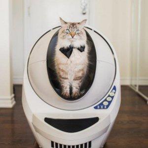 [ 견적가능 ] *10% 비밀쿠폰! 오픈에어 리터로봇Ⅲ 고양이 자동 화장실