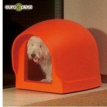 유로프라스트 바우하우스(미니) - 오렌지 애완용품 W21AE92
