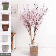 쌍대벚꽃나무화분set 230cm K [조화] 핑크-사방형:빈티지마야우드화분(28cm) 5-5