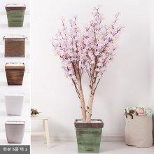 쌍대벚꽃나무화분set 200cm K [조화] 핑크-사방형:빈티지마야우드화분(28cm) 5-5