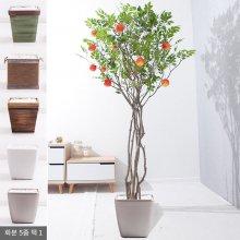 라인-사과나무화분set 210cm (조화) FREOFT 벽면형:빈티지마야우드화분(28cm) 5-5