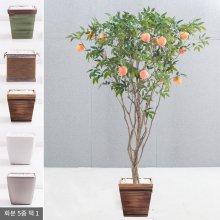 라인-복숭아나무화분set 240cm (조화) FREOFT 벽면형:빈티지마야우드화분(28cm) 5-5