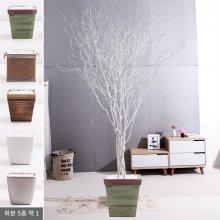 라인-화이트소원나무화분set 240cm (조화) FREOFT 벽면형:빈티지마야우드화분(28cm) 5-5