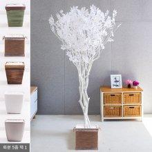 라인-화이트느티나무화이트set 240cm (조화) FREOFT 벽면형:빈티지마야우드화분(28cm) 5-5