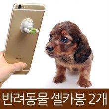 반려동물 셀카봉 사진찍개