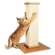 고양이 펫데이즈(파이오니아펫) 얼티메이트 스크래쳐