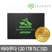 바라쿠다 120 SSD 1TB