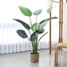 조화 조화나무 극락조 화분세트 고퀄리티 인조나무